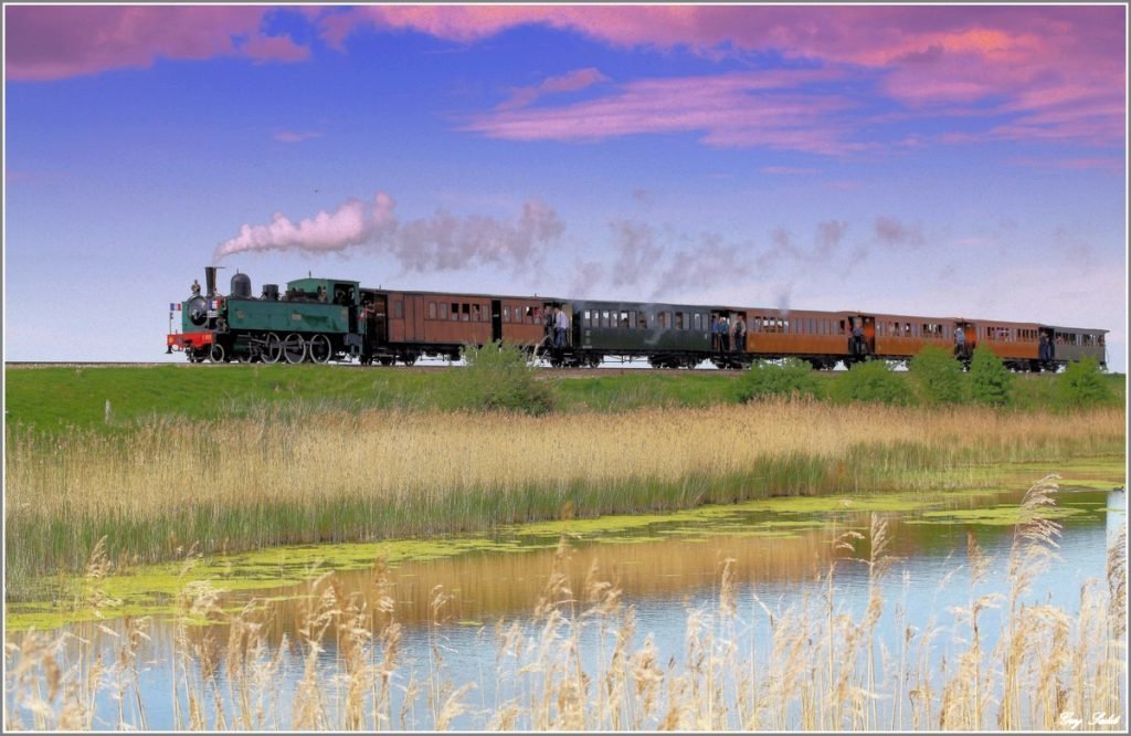 Petit Train de Baie de Somme